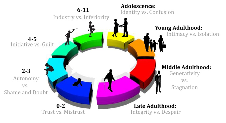 the eight stages of psychosocial development Erik erikson's theory of psychosocial development describes 8 stages that play a role in the development of personality and psychological skills.