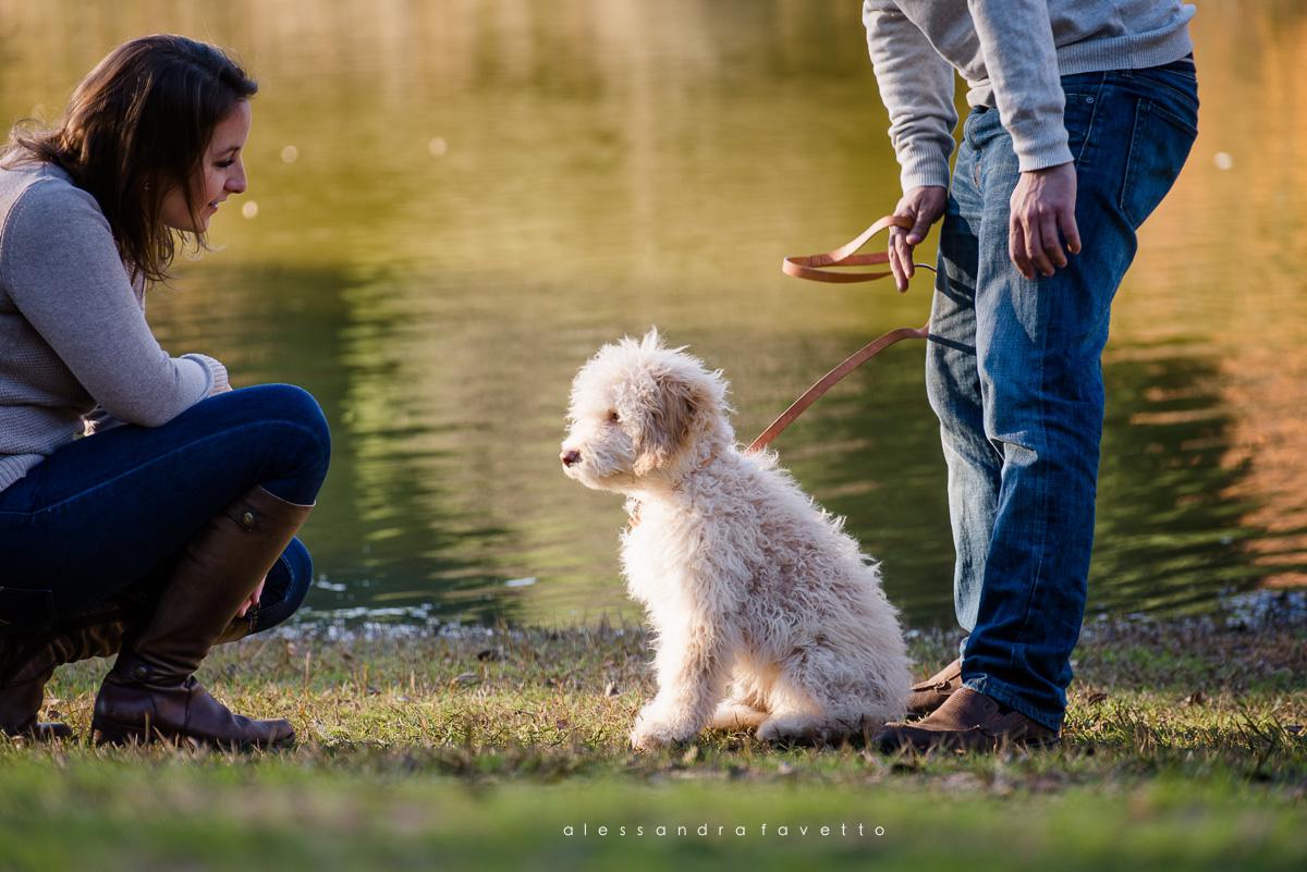 Fotografía de mascota y familia en Sevilla