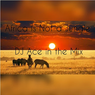DJ Ace – Africa Is Not A Jungle Mix