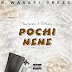 AUDIO | Rayvanny Ft. S2kizzy - Pochi Nene | Download