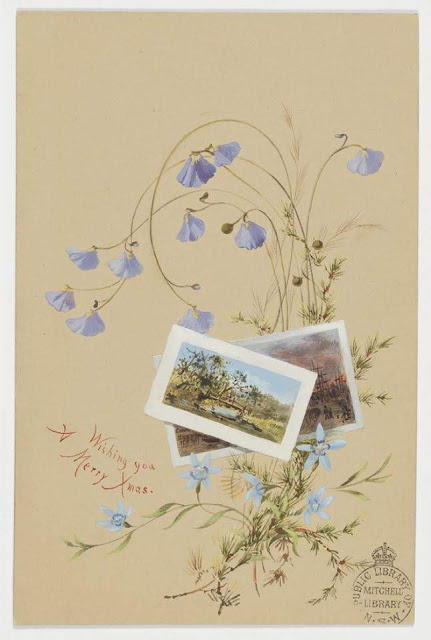 """Christmas Card design depicting native flowers and two snapshots of Australian scenes with the words """"Wishing You a Merry Xmas""""."""