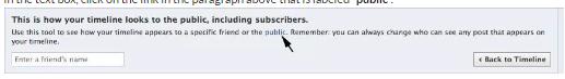 View Facebook As Public