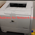 Ip Address for Network Printer