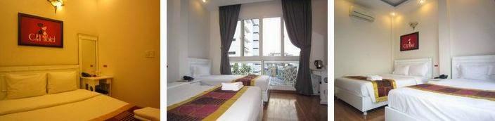 Cat Hotel 3