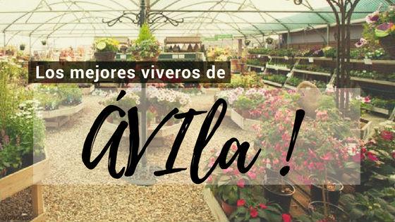 Listado de los Mejores Viveros de la Provincia de Ávila, España, donde puedes comprar plantas para tus proyectos