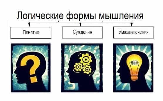 зачем нужно логическое мышление и как его развить