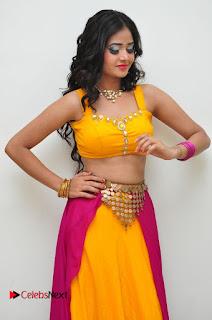 Shreya Vyaas Pictures at Gentleman Audio Launch ~ Celebs Next