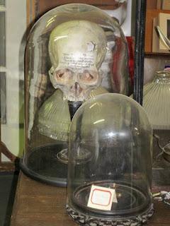 Skull Fracture Under Glass.