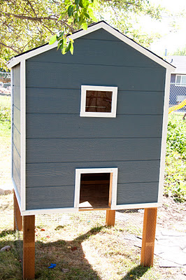 front of finished coop