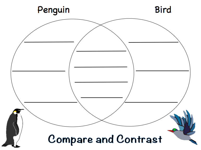 little penguin diagram