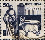 old-Indian-stamp