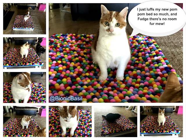 Copyright ©BionicBasil® Crafting with Cat Epic Pom Pom Hammock