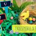 Materiales DIY: las Cajas sensoriales, Caja de la primavera