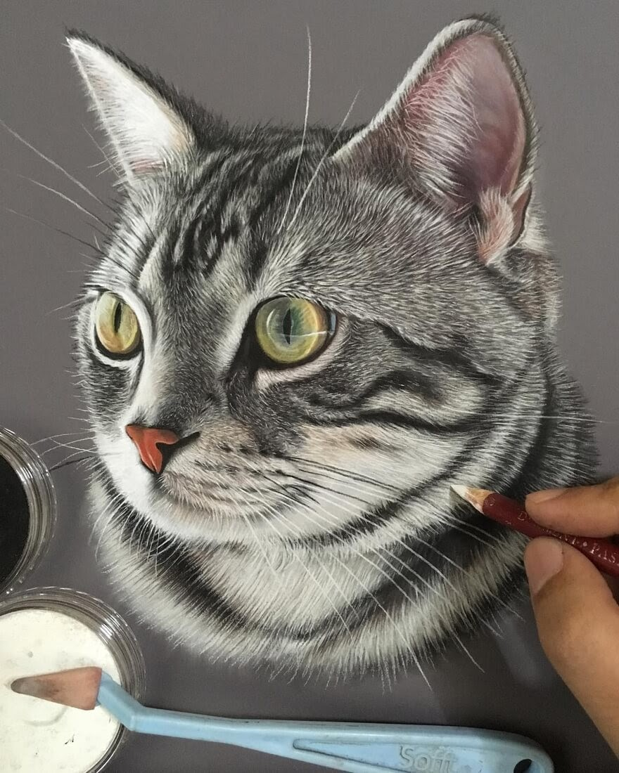 12-Grey-and-White-Cat-Ivan-Hoo-Domestic-and-Wild-Animal-drawings-and-paintings-www-designstack-co