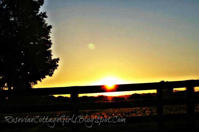 photo of a sunset | infant loss | The long road home, The journey through infant loss and grief. By Rosevine Cottage Girls , Infant death, Trisomy 13