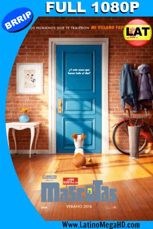 La Vida Secreta de tus Mascotas (2016) Latino Full HD 1080P ()