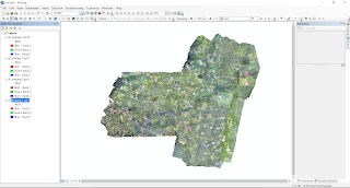 Tutorial : Layout Dua File Tiff Hasil Drone di Arcgis
