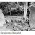 Situs Sanghyang Dengdek, Peninggalan Zaman Batu Di Pandeglang