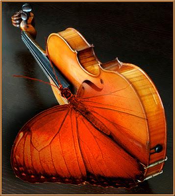 El número poético: sinfonía del infinito, Francisco Acuyo