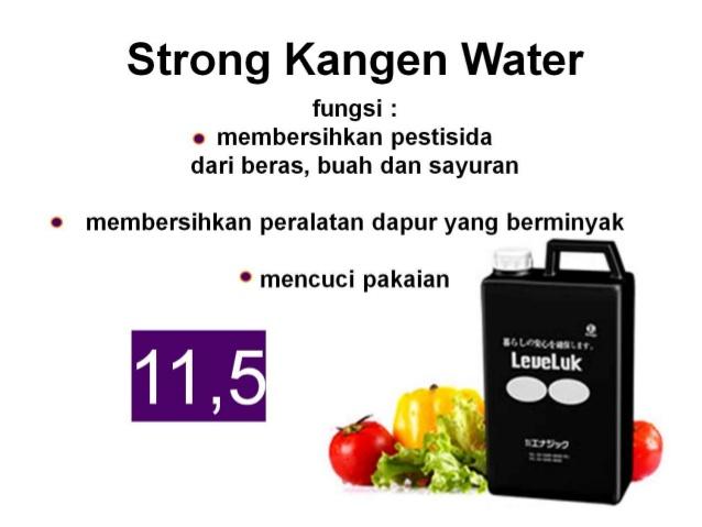 Manfaat Strong Kangen Water STRONG KANGEN WATER™