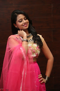 Geethanjali sizzles in Pink at Mixture Potlam Movie Audio Launch 015.JPG