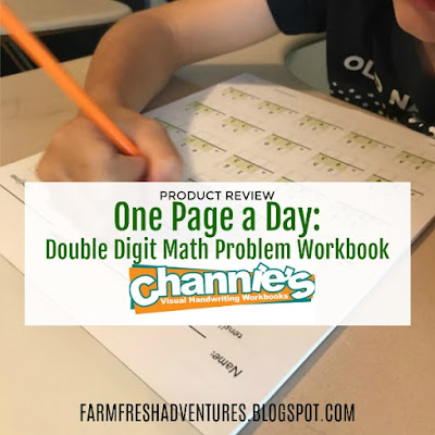 One Page a Day: Double Digit Math Problem Workbook {a review}