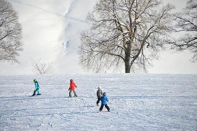 talvi, maisema, lapset, laskettelu