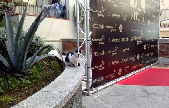 Sitges Film Festival Retiro