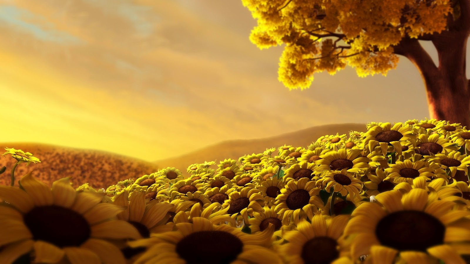 World Of Flowers And HD Wallpapers: HD Superb Desktop