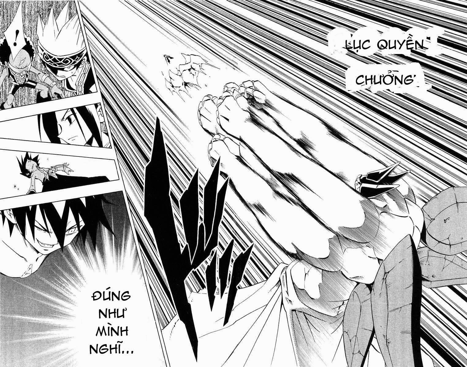 Shaman King [Vua pháp thuật] chap 222 trang 17