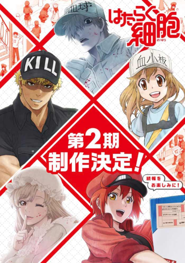 Cells at Work! (Hataraku Saibou) anime - temporada 2