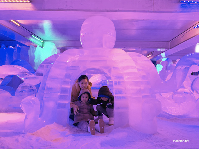 Igloos and more!