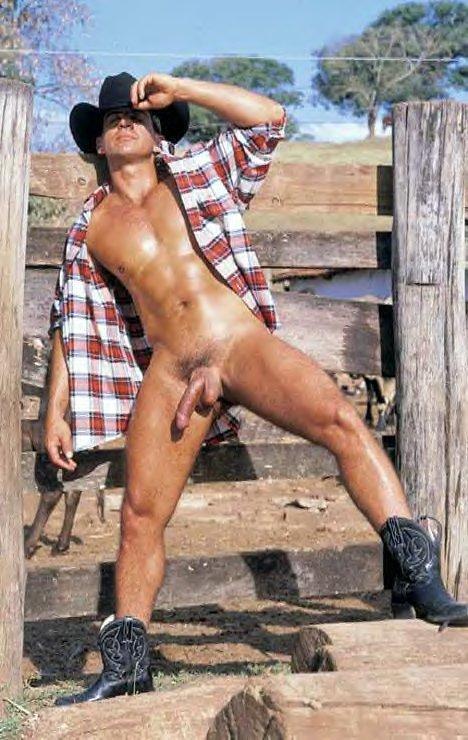 Gay cowboy pic