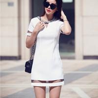 http://www.yesstyle.com/en/yijingmei-short-sleeve-sheer-panel-dress-white-s/info.html/pid.1048888186