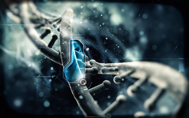 A, Açıklanamayanlar, Anunnaki, Anunnaki deneyleri, Anunnakilerin gizemi, Anunnakilerin insanı yaratması, Dünya dışı yaşam, Homosapienler, İnsanı kim yarattı?, Uzaylıların insana müdahalesi,