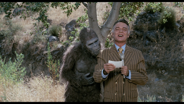 reporter reports the news while an ape is trying to read off his notes