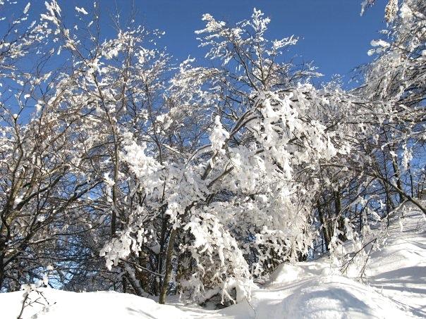 gorski kotar in winter