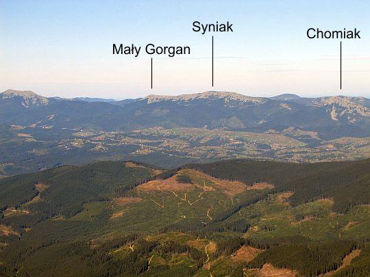 Gorgany (ukr. Ґорґани).