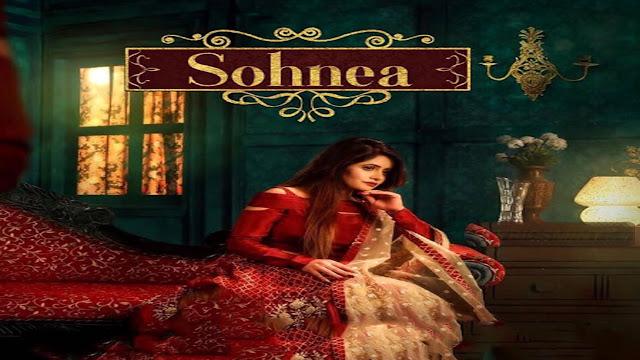 Sohnea Lyrics Miss Pooja, Millind Gaba | Speed Records