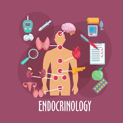 endocrinolog bun craiova