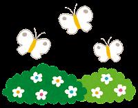 お花畑と蝶のイラスト