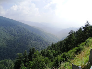 View From Shimla-Narkanda Road
