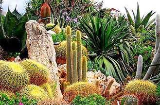 Inilah Taman Botanical Terindah Yang Ada di Dunia