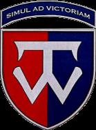 нарукавна емблема (патч) 58-ї окремої мотопіхотної бригада імені гетьмана Івана Виговського