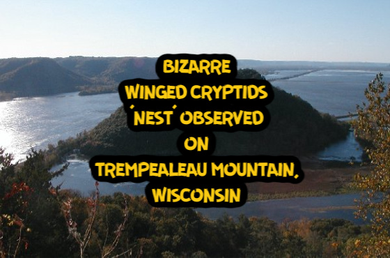 Bizarre Winged Cryptids 'Nest' Observed on Trempealeau Mountain, Wisconsin TrempealeauMtn%2Bwinged%2Bcryptid%2B%25281%2529