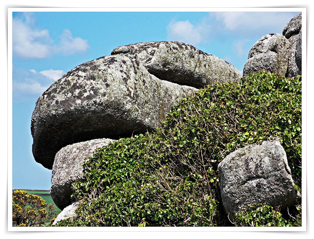 Dinosaur style rock at Helman Tor, Cornwall