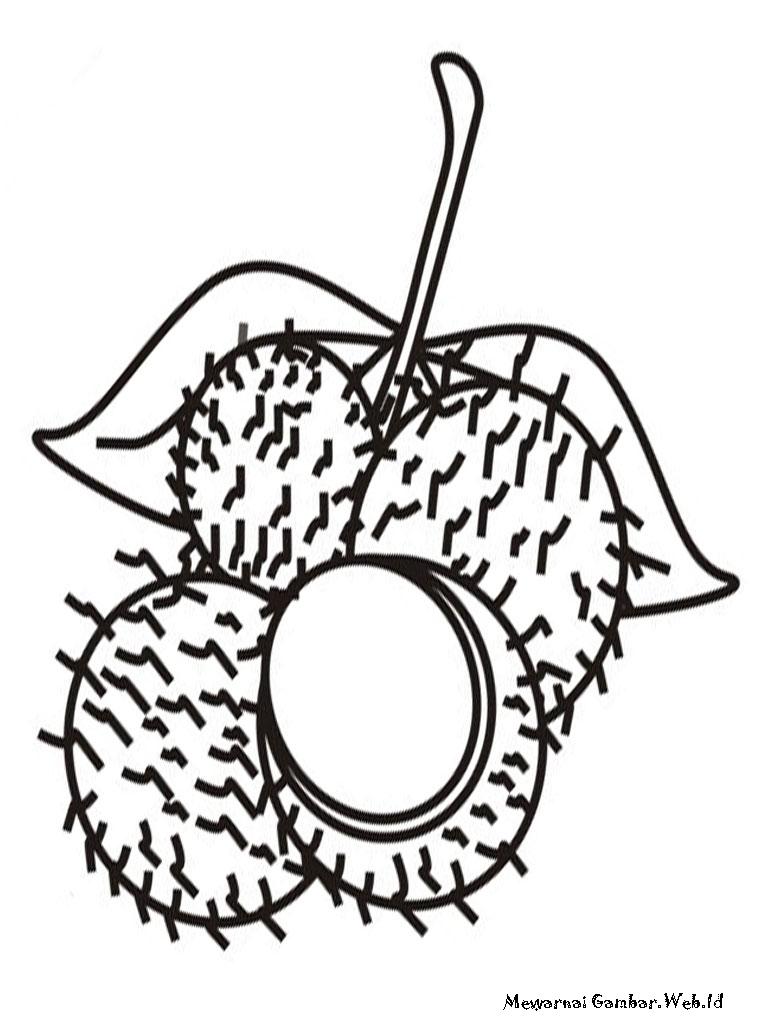 Gambar Kartun Pohon Rambutan