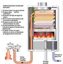 Calentador o termo - Termo gas natural ...