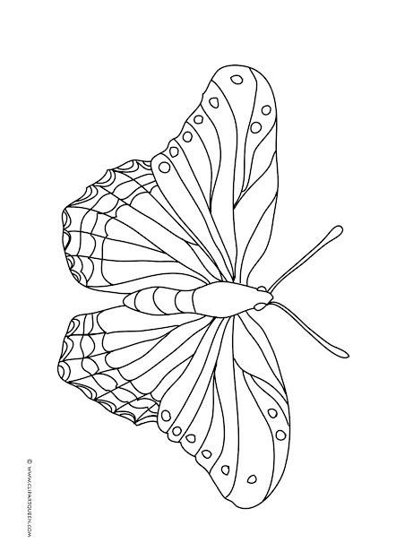 Butterfly Coloring Page With Three Butterflies  One Big Beautifl Butterfly  To Color