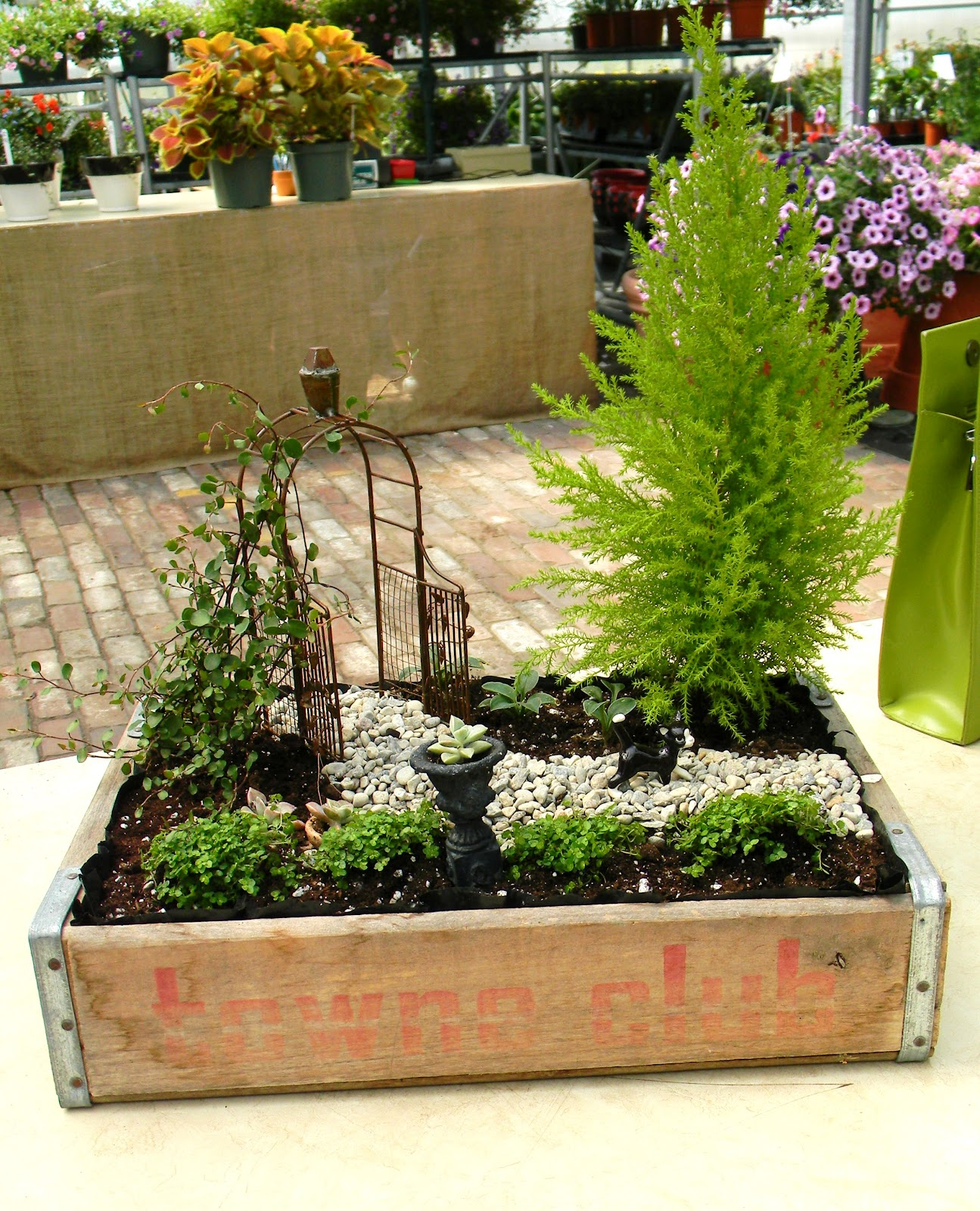Edible Landscaping And Fairy Gardens: Everlasting Blooms: Fairy Garden Inspiration